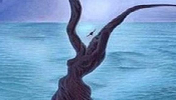 Dinos si ves ramas secas, caras o el mar para conocer cómo eres. (Mdzol)