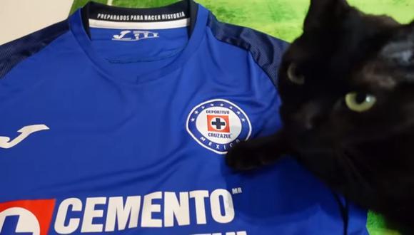 Gata de Zabalive presagio que Cruz Azul será el nuevo campeón de la Liga MX (Foto: Captura/YouTube)