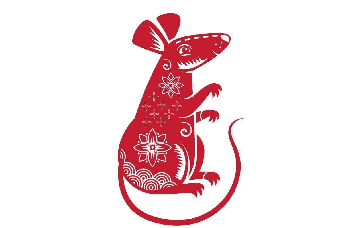 En el año del Buey, la rata podrá tener mayor estabilidad emocional, más seguridad y equilibrio para activar sus ideas y ponerlas en práctica (Foto: Freepik)