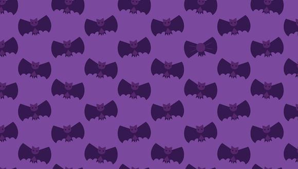 El reto viral de hoy consiste en encontrar los moños entre los murciélagos. (Foto: Noticieros Televisa)